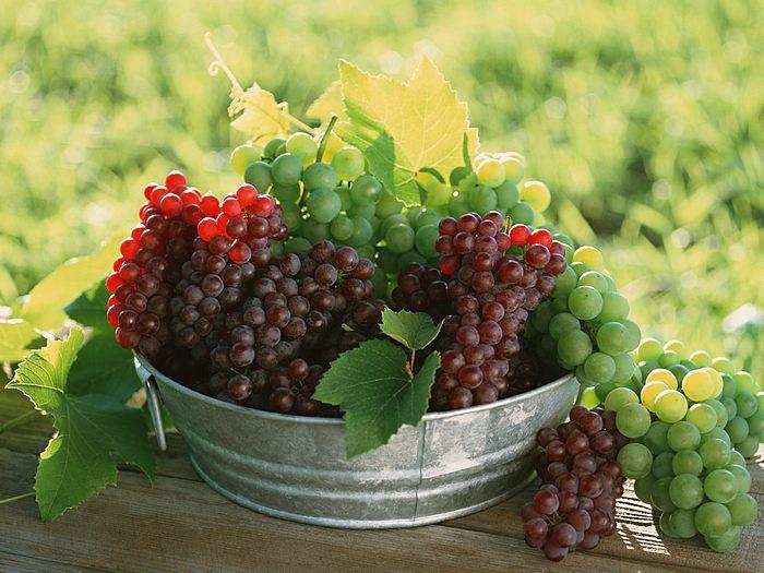 виноград фото -14