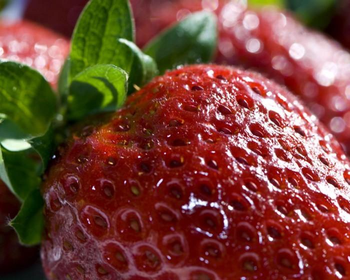 ягоды фото - 03